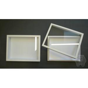 http://www.entosphinx.cz/1057-3090-thickbox/91-boite-entomologique-315x38x6-cm-coouvercle-en-verre-pour-systeme-unit-plastique-blanche.jpg