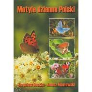 Buszko J., Masłowski J., 2008: Motyle dzienne Polski (Lepidoptera: Hesperioidea, Papiliondidea)