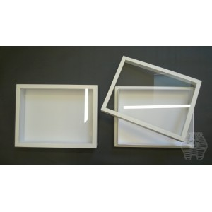 http://www.entosphinx.cz/1098-3250-thickbox/32-boite-entomologique-verre-26x39-blanche.jpg