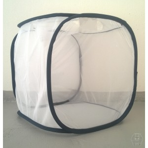 http://www.entosphinx.cz/1156-3434-thickbox/102-cage-d-elevage-30x30x30-cm.jpg