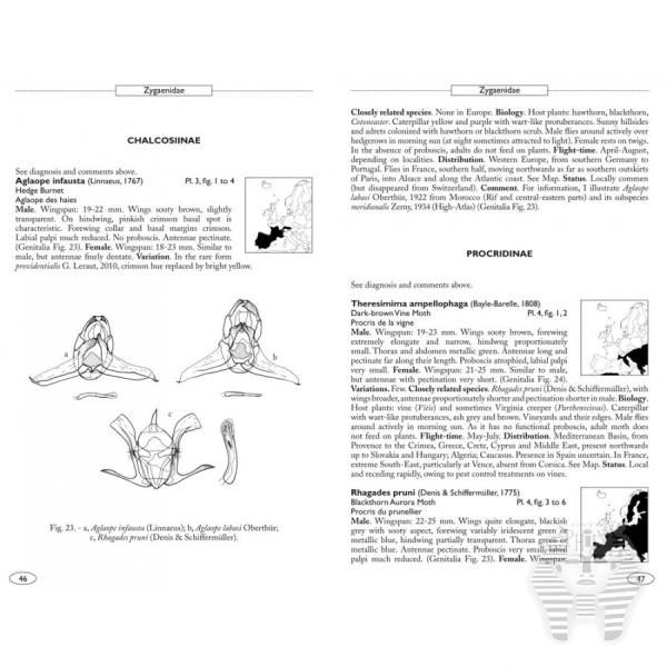 Leraut P., 2012: Moths of Europe, Vol. 3: Zygaenids, Pyralids 1 ...