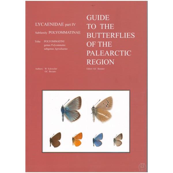 Butterflies hispaniola