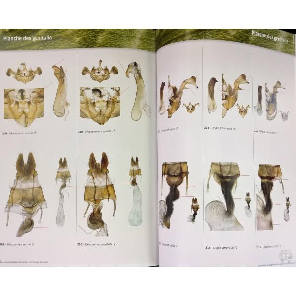 lepertel n quinette j p 2016 atlas des papillons de