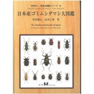 Akita K., Masumoto K., 2016: The Tenebrionid beetles of Japan