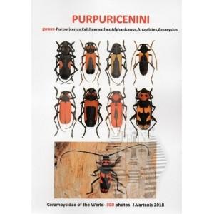 http://www.entosphinx.cz/1448-4769-thickbox/vartanis-j-2018-purpuricenini.jpg