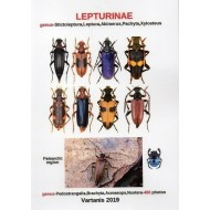 Vartanis J., 2018: LEPTURINAE, genus Stictoleptura, Leptura, Akimerus, Pachyta, Xylosteus