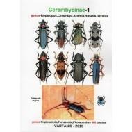 Vartanis J., 2019: Cerambycinae - 1, genus Ropalopus, Cerambyx, Aromia, Rosalia, Derolus