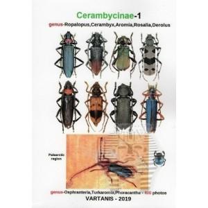 http://www.entosphinx.cz/1470-4876-thickbox/vartanis-j-2019-cerambycinae-1-genus-ropalopus-cerambyx-aromia-rosalia-derolus.jpg