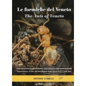 http://www.entosphinx.cz/1499-5007-thickbox/scupola-a-2018-le-formiche-del-veneto.jpg