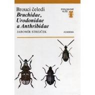 Strejček J., 1990: Brouci čeledi Bruchidae, Urodonidae a Anthribidae