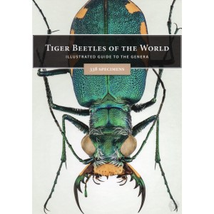 http://www.entosphinx.cz/1593-5466-thickbox/strunc-v2020-tiger-beetles-of-the-world-illustrated-guide-to-the-genera.jpg