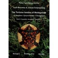 Borowiec Tortoise Madagascar