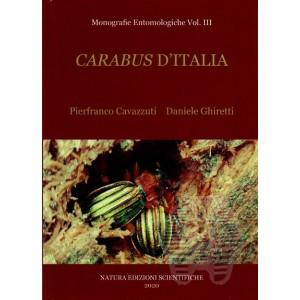 http://www.entosphinx.cz/1614-5583-thickbox/cavazzuti-p-ghiretti-d2020-carabus-d-italia-monografie-entomologiche-vol-iii.jpg