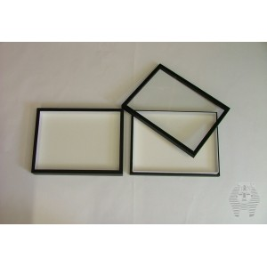http://www.entosphinx.cz/400-1297-thickbox/entomologicka-krabice-15x23-s.jpg