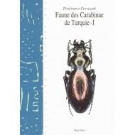 Pierfranco Cavazzuti Faune des Carabidae de Turquie