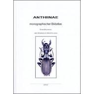 Kleinfeld F., Puchner A., 2012: Anthiinae