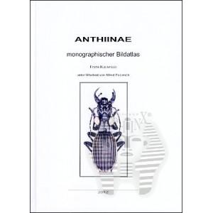 http://www.entosphinx.cz/706-473-thickbox/kleinfeld-f-puchner-a-2012-anthiinae.jpg