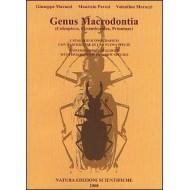 Marazzi G, Pavesi M, Marazzi V.  Genus Macrodontia