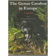 Turin, Penev, Arndt,  Assmann The Genus Carabus L. in Europe