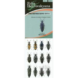 http://www.entosphinx.cz/772-571-thickbox/dvorak-m-vrabec-v-2007-meloidae.jpg