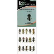 Sláma M., 2006: Cerambycidae. 40 pp. Folia Heyrovskyana