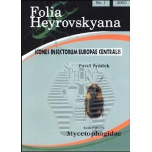 http://www.entosphinx.cz/776-575-thickbox/prudek-p-2005-mycetophagidae-4-pp-folia-heyrovskyana.jpg