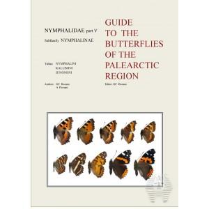 http://www.entosphinx.cz/800-597-thickbox/bozano-floriani-nymphalidae-v-2012.jpg