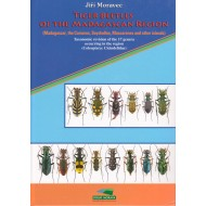 Moravec J., 2010: Tiger Beetles of the Madagascar region (Madagascar, Seychelles, Comoros, Mascarenes, and other islands)