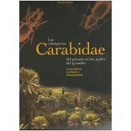 Moret P., 2005: Los Coleopteros Carabidae del Paramo en los Andes del Ecuador: Sistemática, Ecología y Biogeografía