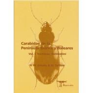 Ortuňo V. M. & Toribio M., 2005: Carabidae de la Península Ibérica y Baleares Vol. I: ( Trechinae, Bembidiini ), 455 pp.