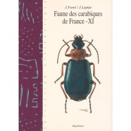 Forel J., Leplat J., 2003: Faune des carabiques de France 11