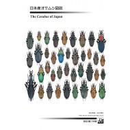 Imura Y.,Mizusawa K.,2013: THE CARABUS OF JAPAN
