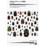 Kawai S.,Hori S.,Kawahara M.,Inagaki M.,2005: ATLAS  OF JAPANESE SCARABAEOIDEA Vol.1., (Coprophagous group)