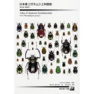 Sakai K.,Fujioka M.,2007: ATLAS OF JAPANASE SCARABAEOIDEA Vol.2., (Phytophagous group I.)
