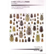Kobayashi H.,Matsumoto T.,2011: ATLAS OF JAPANESE SCARABAEOIDEA Vol.3 (Phytophagous group II.)