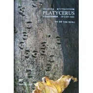 Imura Y.,: 2010: THE GENUS PLATYCERUS  OF EAST ASIA
