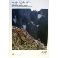 Imura I.,Nagahata Y.,2006: HEMICARABUS MACLEAYI AMANOI