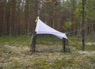 Malaiseho past instalovaná na lesní světlině