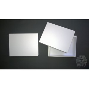 https://www.entosphinx.cz/1042-3072-thickbox/57-entomological-box-30x40x54-cm-without-filling-for-carton-unit-system-full-lid-white.jpg