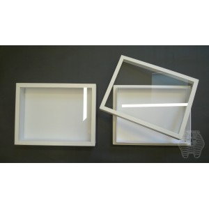 https://www.entosphinx.cz/1048-3079-thickbox/67-entomological-box-30x40x54-cm-without-filling-for-carton-unit-system-glass-lid-white.jpg