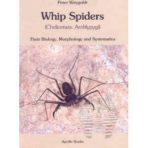 https://www.entosphinx.cz/1074-3223-thickbox/weygoldt-p-2000-whip-spiders-their-biology-morphology-and-systematics-chelicerata-amblypygi.jpg