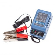 38.61 - Battery charger AL300 Pro AKA 2/6/12V