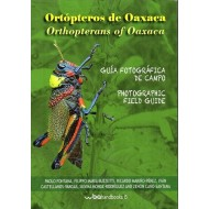 Fontana P., Buzetti F. M., : Ortópteros de Oaxaca