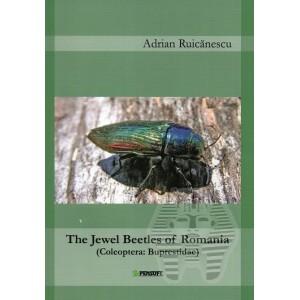 https://www.entosphinx.cz/1467-4861-thickbox/ruicanescu-a-2013-the-jewel-of-romania-coleoptera-buprestidae.jpg