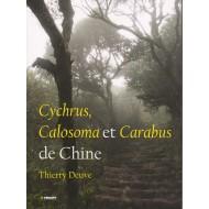 Deuve T.,2013 : Cychrus,Calosoma et Carabus de Chine