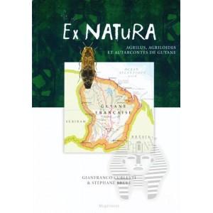 https://www.entosphinx.cz/917-1136-thickbox/curletti-gbrule-s2011-ex-naturavol2agrilusagriloides-et-autarcontes-de-guyane.jpg