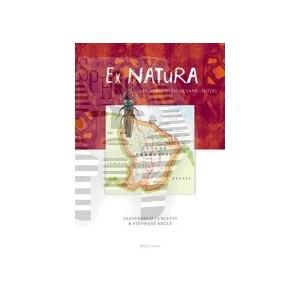 https://www.entosphinx.cz/978-1196-thickbox/curletti-gbrule-s2013-ex-naturavol5les-agrilini-de-guyane.jpg